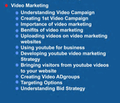 Video Marketing snapshot