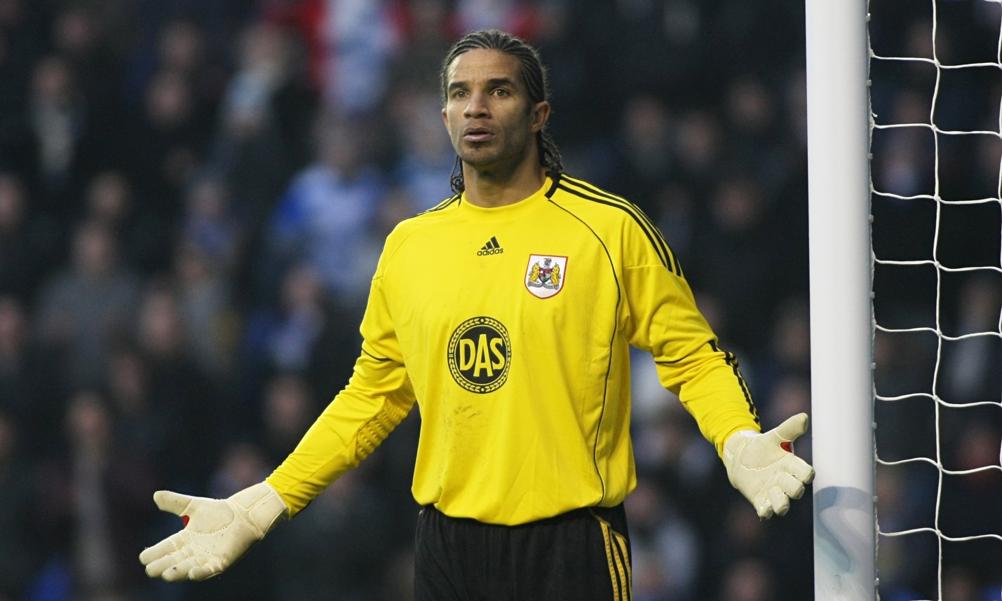 David James: Goalkeeper