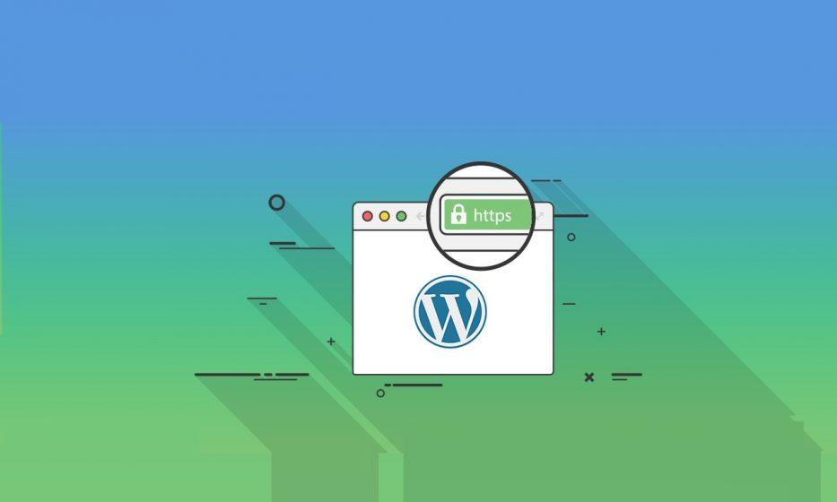 wordpress-dsim